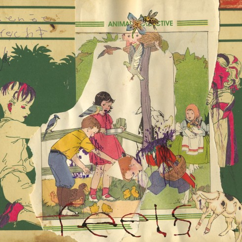 Feels album cover // Animal Collective